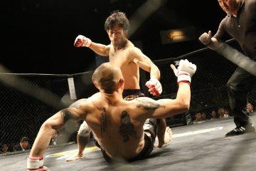 Viendo la UFC