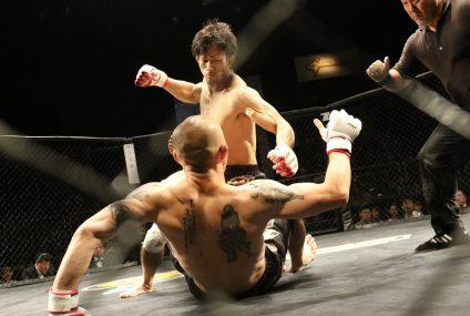 Comment faire pour pouvoir regarder le Championnat UFC