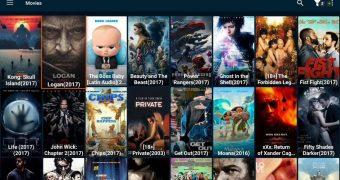 Regarder FreeFlix via le Fire Stick/la Fire TV Amazon